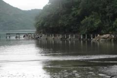 RA-Canoagem-Saco-do-Mamangua-10
