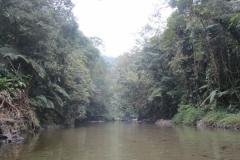 Rio Jaguareguava.