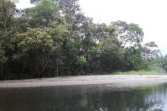 Subindo o rio Jaguareguava.