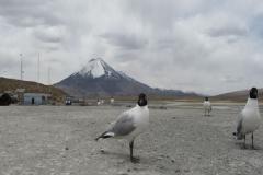 RA-Canoagem-Expedicao-Atacama-27