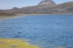 RA-Canoagem-Expedicao-Atacama-63