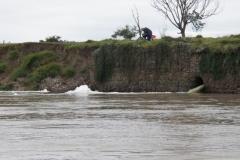 Poluição no rio: uma triste realidade.