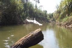 exploracao-rio-branco32