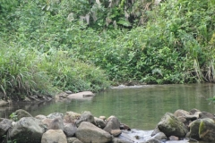 exploracao-rio-branco36