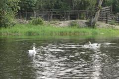 exploracao-rio-preto135