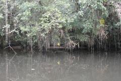 exploracao-rio-preto155