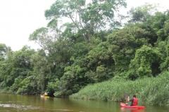 RA-Canoagem-Expedicao-Alto-Itapanhau-16