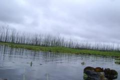 RA-Canoagem-Represa-Taiacupeba-19