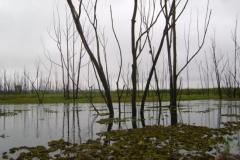 RA-Canoagem-Represa-Taiacupeba-8