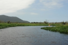 RA-Canoagem-Rio-Bichoro-53