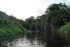 RA-Canoagem-Rio-Bichoro-85