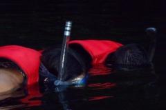 Momento do snorkeling.