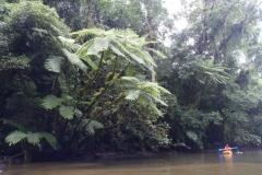 ra-canoagem-rio-jaguareguava-32