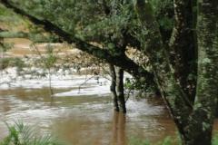 ra-canoagem-rio-jacare-pepira-16