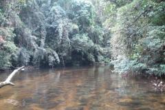 racanoagem-rio-claro-09-1