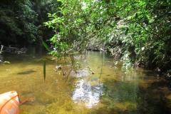 racanoagem-rio-claro-10