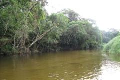ra-canoagem-bertioga-rio-itapanhau-06
