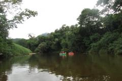 ra-canoagem-bertioga-rio-itapanhau-07