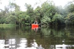 ra-canoagem-bertioga-rio-itapanhau-12