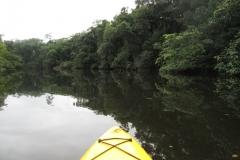 ra-canoagem-bertioga-rio-itapanhau-13