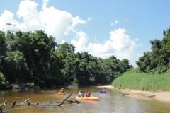 ra-canoagem-rio-itapanhau-20