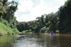 ra-canoagem-rio-itapanhau-26