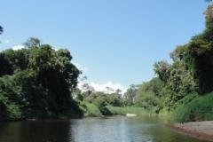 ra-canoagem-rio-itapanhau-28