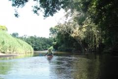 ra-canoagem-rio-itapanhau-29