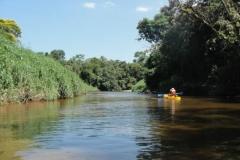 ra-canoagem-rio-itapanhau-31